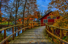 Wooden path (Joni Mansikka) Tags: autumn nature atmosphere foliage leaves colours outdoor wooden path noormarkku suomi finland trees branches dark clouds ambience canonef2870mmf3545ii