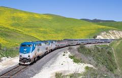 Coast Starlight on Cuesta Pass (Jake Miille) Tags: amtrak trains railroad passengertrain superliner coaststarlight cuestapass sanluisobispo sanluisobispocalifornia upcoastsubdivision