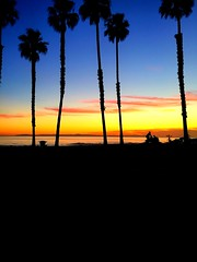 Sunset in Huntington Beach, CA 11/10/16 (justinarcy) Tags: waves ocean catalinaisland surfers silhouette palmtrees pacificcoasthighway pch hb tranquil serene bliss photography surfcity skyonfire orangesky sunsets southerncalifornia socal huntingtonbeach sunset