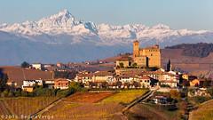 Le Langhe - Serralunga d'Alba (beppeverge) Tags: barolo beppeverge colline dolcetto grapes italy landscape langhe moscato paesaggio roero uva vigna vigneti vineyard vino vitigni wine