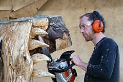 Chainsaw Artist at Work - Matthew Crabb (Finding Chris) Tags: sandringham craftfair chainsaw artist wood sculpture matthewcrabb exmoor chainsawartist