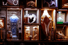 The Amazing Curiosity Cabinet (gregory.sevin) Tags: paris ledefrance france fr alcool furniture weird esoteric