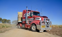 Arnold (quarterdeck888) Tags: trucks transport semi class8 overtheroad lorry heavyhaulage cartage haulage bigrig jerilderietrucks jerilderietruckphotos nikon d7100 frosty flickr quarterdeck quarterdeckphotos roadtransport highwaytrucks australiantransport australiantrucks aussietrucks heavyvehicle express expressfreight logistics freightmanagement outbacktrucks truckies arnold roadtrain t604 kenworth hay dropdeck