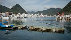 山と海の街 (kasa51) Tags: cityscape port harbor sea mountain coast shimoda izu japan fishingboat