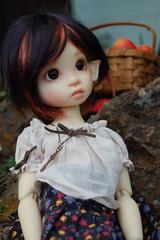 Tertia, Elf or Child? (Emily1957) Tags: kayewiggs bjd dolls doll toys toy light naturallight nikond40 nikon kitlens