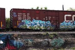 Train Graffiti (Snake Oil Magazine) Tags: graffiti traingraffiti trainbenching benching benched graff vandalism spraypaint