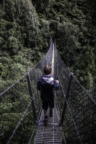 The swing bridge #20, Montezuma Falls, Tasmania's West Coast