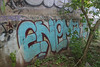 Enema (NJphotograffer) Tags: new bridge graffiti nj jersey graff enema