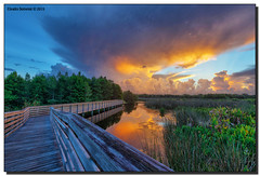 Walking into the Storm (Fraggle Red) Tags: morning storm nature clouds sunrise reflections landscape dawn florida wetlands boardwalk thunderstorm hdr stormclouds boyntonbeach 7exp calmmorning greencay greencaywetlands canonef1635mmf28liiusm dphdr palmbeachco canoneos5dmarkiii 5d3 5diii