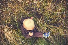 XE23 - Leo i fältet (manuel ek) Tags: family autumn love nature field grass children outdoors skåne leo sweden candid naturallight september fujifilm malmö fujinon 2015 takeawalk 23mm meya fujix xe2 manuelekphoto husiemosse fujixphotographer