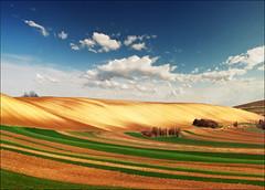Begining (Katarina 2353) Tags: landscape spring europe serbia fields vojvodina serbiainspired