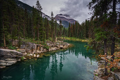 Horseshoe Lake (Carrie Cole Photography) Tags: park travel cliff mountain lake canada reflection tourism nature water beauty rock zeiss landscape rockies jasper northwest scenic canadian canyon national alberta rockymountains horseshoe tranquil a7 reflction sonya7 carriecole fe1635z sonyfe1635z