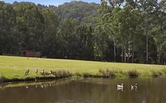 24 Green Valley Way, Piggabeen NSW