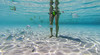USVI Summer Vacation 2015-17.jpg (MudflapDC) Tags: vacation fish beach underwater melissa stjohn stthomas kokibeach virginislands usvi