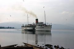2043.  MAID OF THE LOCH. (Ron Fisher) Tags: uk greatbritain lake water boats scotland unitedkingdom gb 1975 loch lochlomond paddlesteamer maidoftheloch