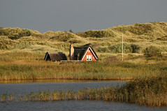 "I believe it is called ""location"" (Jaedde & Sis) Tags: dunes cottage sweep sommerhus nymindegab unanimous challengeyouwinner friendlychallenges challengefactorywinner thechallengefactory"