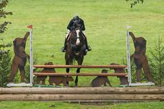 DSC02680_s (AndiP66) Tags: nationalespferdezentrumbern nationales pferdezentrum npz springen bern samstag saturday 2015 oktober october pferd horse schweiz switzerland kantonbern cantonofbern concours contest wettbewerb horsejumping springreiten pferdespringen equestrian sports pferdesport sport sony sonyalpha 77markii 77ii 77m2 a77ii alpha ilca77m2 slta77ii sony70400mm f456 sony70400mmf456gssmii sal70400g2 andreaspeters ch