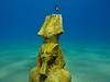 Egypt 2015 (someofmypics) Tags: turtle redsea egypt bikini wetsuit triggerfish naamabay hiltonfayrouz anthiasdivers sinaicollege