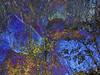 IMG_9447 Great Meadows  ©2016 Paul Light (Paul Light) Tags: dxpapp greatmeadows lexington massachusetts minutemanbikeway multipleexposure