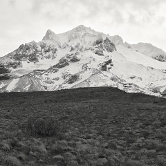13th of November, Mt. Hood (Scott Withers Photography) Tags: paradiseparktrail mthood oregon sonyrx100