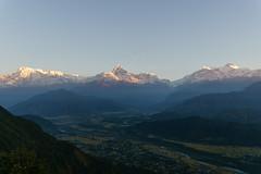 Annpurna Himal at Sunrise from Sarangkot 1600m (Poxxel) Tags: nepal annapurna sarangkot annapurnaii annapurnasouth hiunchuli machapuchare annapurnahimal annapurnaiv