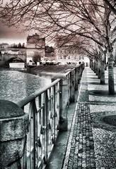 (franco.56) Tags: alberi europa fiume praga bn paesaggi atmosfera franco viale 2015