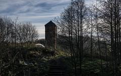 Moore Nature Reserve Sunday Walk (joanjbberry) Tags: outdoors warrington cheshire pentax walk moore k3 moorenaturereserve pentaxk3 moorewarrington