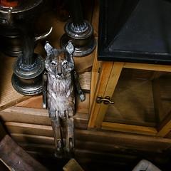 Indeed, He Had Re-appeared Near The Desk.. (MPnormaleye) Tags: desktop wood strange animal toy weird wooden wolf doll furniture fantasy utata beast figurine bizarre minature