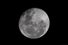 Moon (arun skariah) Tags: moon full telescope astrophotography canon eos5dmkii skywatcher refractor ebay tring mount