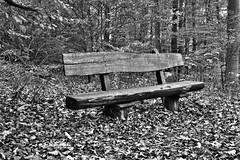 Wandertour 15.10.2016 Diemelsee (diemelwalker) Tags: diemelwalker diemelsee diemelsteig deutschland diemeltalsperre diemelbullys wanderweg waldeckfrankenberg wasser wanderung wandertour waldroute naturparkdiemelsee naturpark nordhessen natur nature