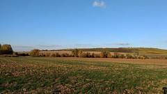 Selztal zwischen Sörgenloch und Hahnheimer Bruch