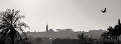 Free (Marcos Jerlich) Tags: bnw cityscape landscape contrast shrine october holiday cielo sky skyline blackandwhite monochrome church city canont5i canon canon700d brazil marcosjerlich panorama