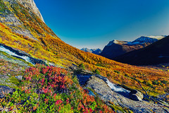 Autumn in the Alps of Sunnmre (Usstan) Tags: mountainside autumn d750 nikon serene mreogromsdal mountains outdoor wideangle creek clear seasons locations standalseidet mountainpeak water trees norge rsta sky colors shadows norway sunnmre landscape mountain mreogromsdal sunnmre rsta no