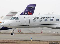 Gulfstream5_MexicanaAirForce_3910-003 (Ragnarok31) Tags: gulfstream aerospace g550 gvsp fuerza aerea mexicana mexico air force 3910