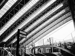 Osaka Station - Umeda 1725 (Tangled Bank) Tags: japan japanese asia asian osaka city station jr rail railway downtown urban train railroad