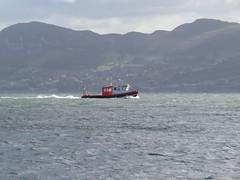 IMG_5056 (Andy - Daft as a brush - don't ask!) Tags: 20161018 charterboat ddd divingboat menaistraits merchantvessel mmm mveemsstream penmon questdiving rib rrr ship sss vvv