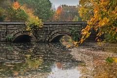 Autumn surprise (mgstanton) Tags: autumn fall foliage fallfoliage ashlandma ashland newengland water bridge waterunderthebridge