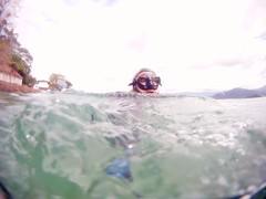 GOPR5912 (ambrogi_taubate) Tags: naturezaselvagem marinha mergulhando ubatuba sp brasil naturezamarinha fantstica apneia 10m setembro primavera 2016