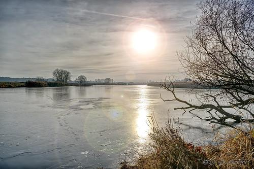 Alte Elbe - Ehle bei Gerwisch Jerichower Land