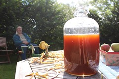 Fresh Apple Juice in a Demijohn (Local Food Initiative) Tags: permaculture apple day apples press pressing cider group sustainable orchard juice fresh pressed demijohn