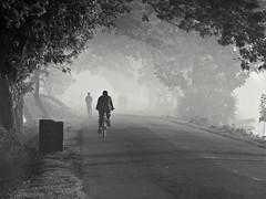 TIME TRAVEL (Fog) (Shafi Uddin1) Tags: monzur blackwhite streetsofbangladesh streetphotography winter morning wintermorning fog natural nature horizontal ngc supershot street life কুয়াশা বাংলাদেশ bangladesh road netrokona