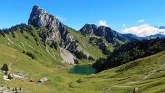 Le Linleu (2093m) et le Lac d'Arvouin - Haute-Savoie - France (Felina Photography) Tags: linleu lacdarvouin lac see meer lago lake