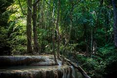 Thailand (Cyrielle Beaubois) Tags: 2015 canoneos5dmarkii cyriellebeaubois thailand thai asia southeast travel thalande