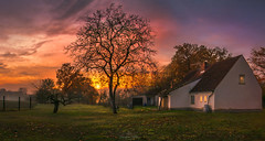 Abendstimmung alter Bauernhof (Christian Heller) Tags: herzfelde hauptstrase sunset long langzeitbelichtung farme autumn herbst sun yellow orange tree trees sky cloud clouds foggy fogg nebel