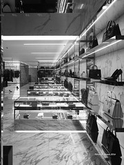 Showcases To Infinity (Carbonman_) Tags: extravagance wealth prada