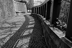 HFF , Happy Fence Friday (jo.misere) Tags: hff frday shadow schaduw germany duitsland bw zw sw lijnen bochten curves