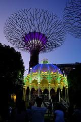 christmas carols at Cassa Armonica (liqingwong) Tags: fujixt10 fujifilmsg fujifilm gbtb gardensbythebay cassa armonica singapore