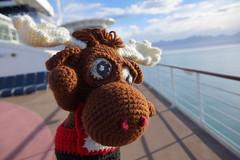 DSC01298 (The Crochet Crowd) Tags: crochetmoose amigurumi moose crochet doll alaska britishcolumbia thecrochetcrowd michaelsellick jeannesteinhilber danielzondervan crochetcruise mooseontheloose