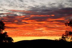 Karijini National Park, Western Australia. (Cale McMillen) Tags: travel slr art texture rock canon landscape photography eos nationalpark outdoor ngc australia wa gorge aboriginal petroglyph karratha westernaustralia carvings indigenous karijini millstream pilbara dampier 650d burrup murujuga