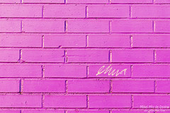 scribble on a bricked wall (Mimadeo) Tags: street pink urban brick texture sign wall writing word sketch background grunge text stroke elena block write concept scribble textured bricked